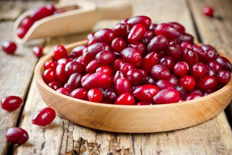 Dereń jadalny – właściwości lecznicze izastosowanie