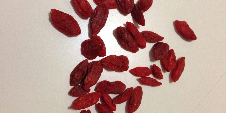 Jagody goji – owoc długowieczności
