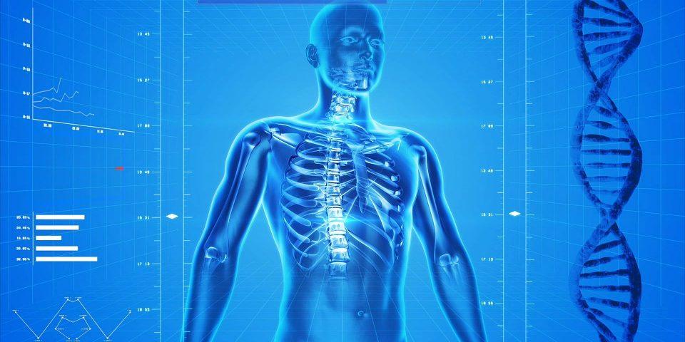 Witamina K2- naturalnie dla kości